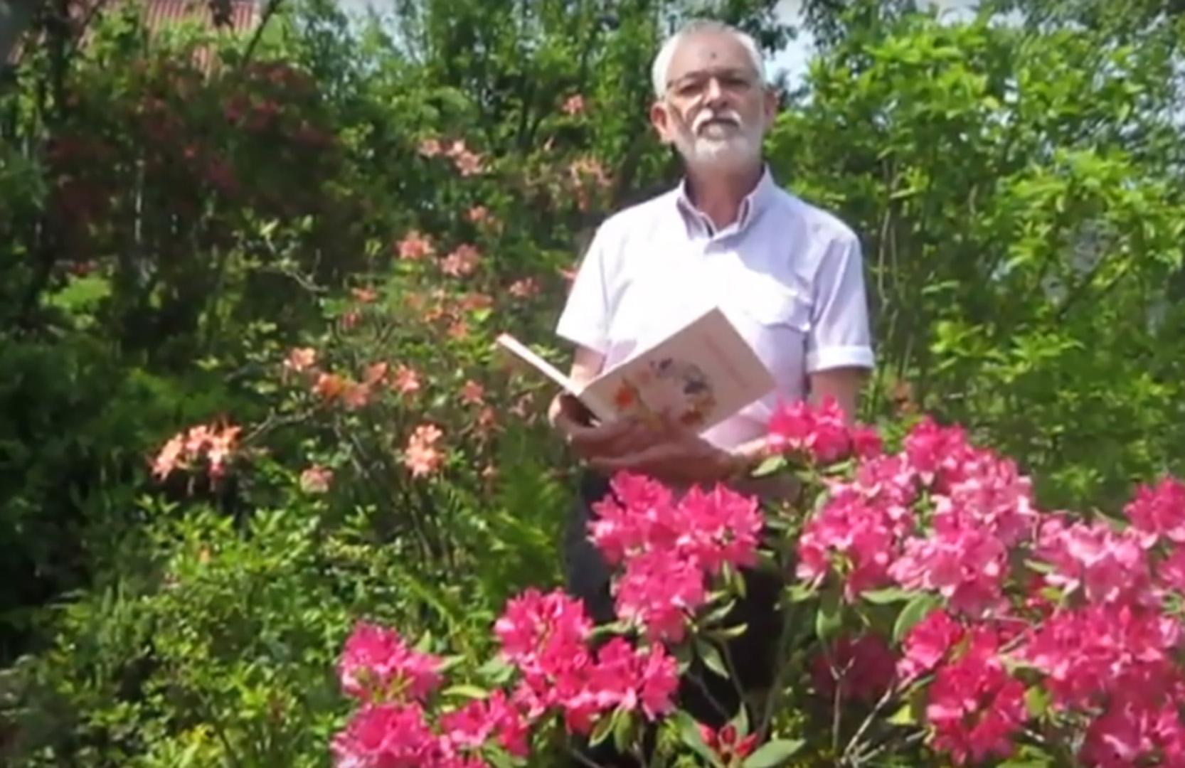 """Z cyklu """"Portrety kwiatów"""" – rododendron"""