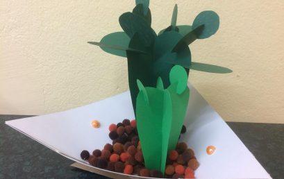 Kaktusy wyrosły w pracowni plastycznej