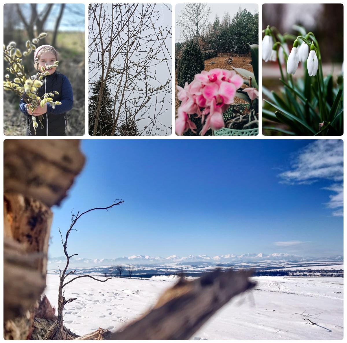 """Rozstrzygnięcie konkursu """"Wiosenne wyzwanie fotograficzne"""""""